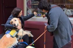 Brusselse sensibiliseringscampagne ter bevordering van de toegang van assistentiehonden